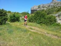 Course Nature Larzac et Vallée