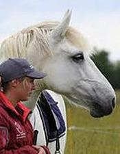 Stages d'équitation éthologique
