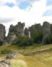 Randonnée nature et découverte des vautours avec la LPO Grands Causses à Roquesaltes