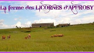 La Ferme des Licornes d'Aphrosy - Creissels