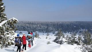 La Maison du Plein Air - Raquettes à neige - Millau