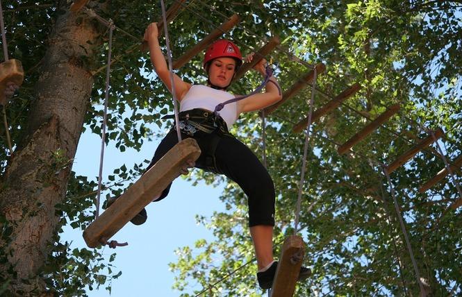 Antipodes Arbres et Cimes - Parcours dans les arbres 3 - Millau
