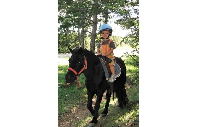 Centre Equestre Le Sonnac 3 - La Cresse