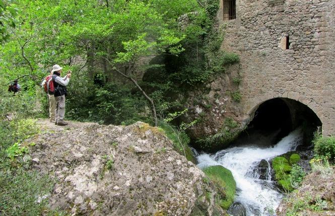 Randonnées Millau - Randonnée pédestre 4 - Millau