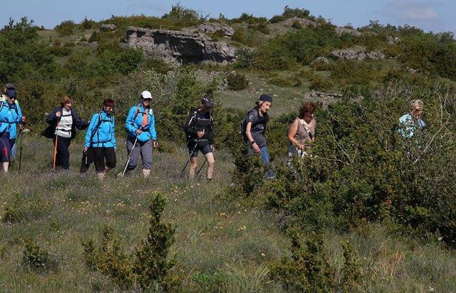 Trail de la Devèze 4 - Lapanouse-de-Cernon