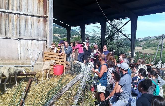 Ferme de Pinet, visite d'un élevage de brebis en agroécologie 1 - La Cresse